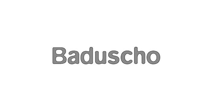 Zufriedener Kunde Markus Ettl Installateur in Neusiedl am See und Weiden am See - Baduscho Logo